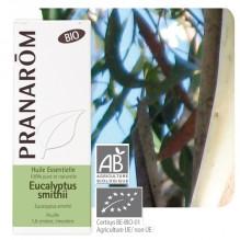 Huile essentielle d'Eucalyptus smithii BIO - 10 ml