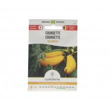 Courgette Goldrush - 2,0 g