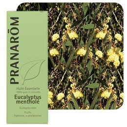 Huile essentielle d'Eucalyptus mentholé