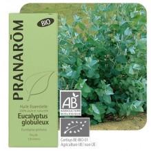 Huile essentielle d'Eucalyptus globulus - BIO !