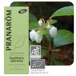 Huile essentielle de Gaulthérie odorante BIO 10 ml