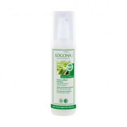 Spray coiffant - bambou BIO - spécial brushing - 150 ml