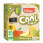 Cool Fruits - Pomme Poire - Lot de 4 Gourdes