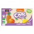 Cool Fruits - Pomme Mangue Ananas - Lot de 12 Gourdes