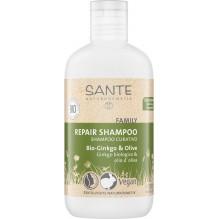 Shampooing de soin - ginkgo et olive BIO 200 ml