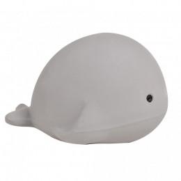 Baleine - dès la naissance