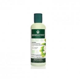 Shampooing réparateur Bio - Moringa - 260 ml