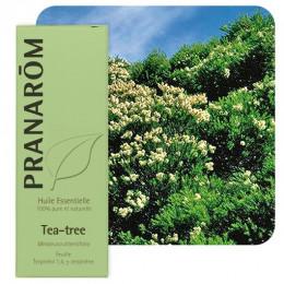Tea-tree essentiële olië - 10 ml
