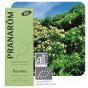 Tea-Tree essentiële olië BIO