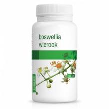 Boswellia (Wierook Oliban)