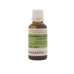 Etherische olie  Lavandin super - 30 ml