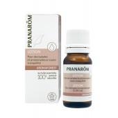 Aromaforest - Voor uitstapjes en wandelingen in alle rust - 10 ml